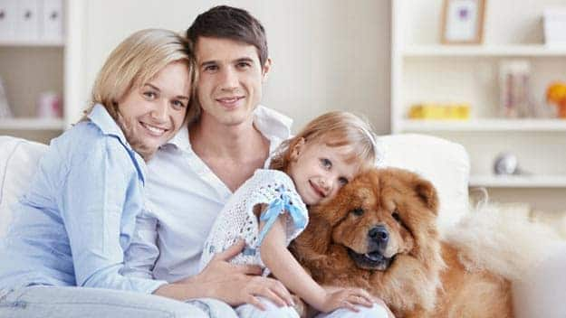Wills & Trusts dog-young-family Direct Wills Tilehurst